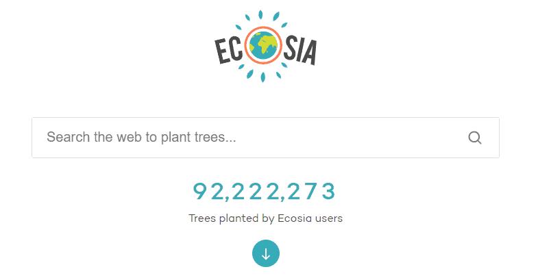 Ecosia wyszukiwarka