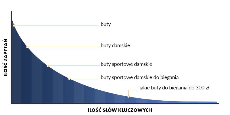Frazy long tail, słowa kluczowe z długiego ogona - wykres